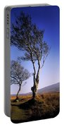 Hawthorn Trees In Sally Gap, County Portable Battery Charger