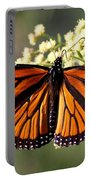 Heavenly Wings Portable Battery Charger