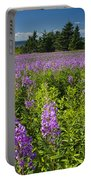 Hedge Woundwort Flower Blossoms And Field Portable Battery Charger