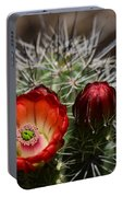 Hedgehog Cactus Flowers  Portable Battery Charger
