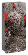 Hedgehog Cactus With Red Blossoms Portable Battery Charger
