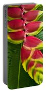Heliconia Rostrata II Portable Battery Charger
