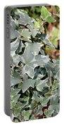 Helix Glacier Ivy Portable Battery Charger