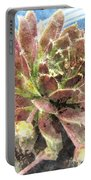 Hen And Chicks Plant Portable Battery Charger