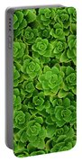 Hens And Chicks Plants Sempervivum Portable Battery Charger