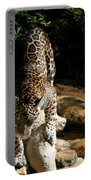 Here Kitty Kitty Portable Battery Charger