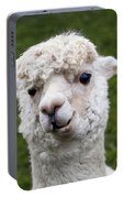 Here's Lookin' At You Kid Portable Battery Charger
