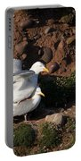 Herring Gulls Mating Portable Battery Charger