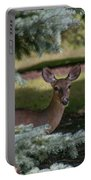 Hi Deer Portable Battery Charger