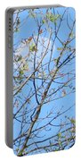 High Point Moon Portable Battery Charger
