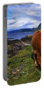 Highland Cattle, Scotland Portable Battery Charger