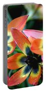 Hippie Tulips Portable Battery Charger