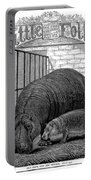Hippopotamus Portable Battery Charger