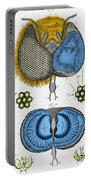 Historical Illustration Of Honey Bee Eye Portable Battery Charger