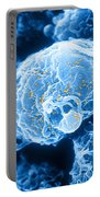 Hiv-1 Infected T4 Lymphocyte Sem Portable Battery Charger by Science Source