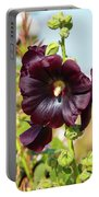Hollyhock 7193 Portable Battery Charger