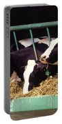 Holstein Dairy Cows Portable Battery Charger by Photo Researchers