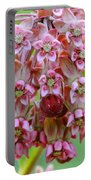 Honeybee On Milkweed Portable Battery Charger