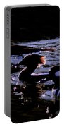 Hooded Mergansers And Moon Glare Portable Battery Charger