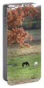 Horse Barn Hill Pasture Portable Battery Charger