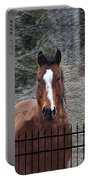 Horse Behind The Fence Portable Battery Charger