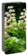 Horse Chestnut Blossoms Portable Battery Charger