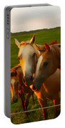 Horse Family Soft N Sweet Portable Battery Charger
