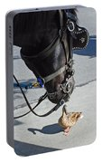 Horse Feathers Portable Battery Charger