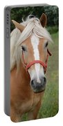 Horse Miss You Portable Battery Charger
