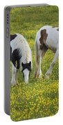 Horses Grazing, County Tyrone, Ireland Portable Battery Charger