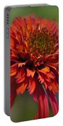 Hot Papaya Hybrid Coneflower Portable Battery Charger
