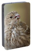 House Finch Profile Portable Battery Charger