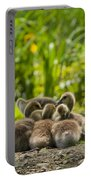 Huddled Goslings Baby Geese Along River's Edge Portable Battery Charger