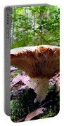 Huge White Wild Mushroom Portable Battery Charger