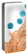 Human Herpes Virus-6 Portable Battery Charger by Science Source