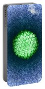 Human Papilloma Virus Hpv Portable Battery Charger by Science Source
