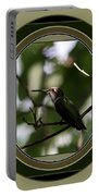 Hummingbird - Card - Glint Of The Eye Portable Battery Charger