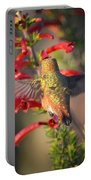 Hummingbird In Flight 1 Portable Battery Charger