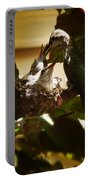 Hummingbird Mother Feeding Her Two Babies II Portable Battery Charger