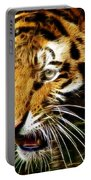 Hungry Tiger Portable Battery Charger