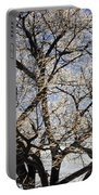 Ice Covered Tree At Sunrise Portable Battery Charger