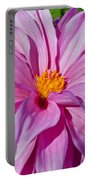 Ice Pink Dahlia Portable Battery Charger