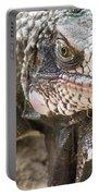 Iguana At Magens Bay Portable Battery Charger