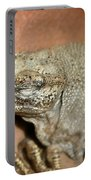 Iguana Portable Battery Charger