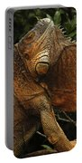 Iguana Costa Rica Portable Battery Charger
