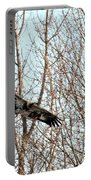 Immature Bald Eagle Flying Portable Battery Charger