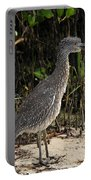 Immature Blacked Crowned Night Heron Portable Battery Charger