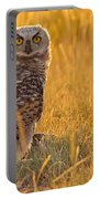 Immature Great Horned Owl Backlit Portable Battery Charger