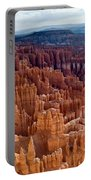Inspiration Point Portable Battery Charger