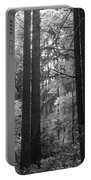 Into The Wood Portable Battery Charger